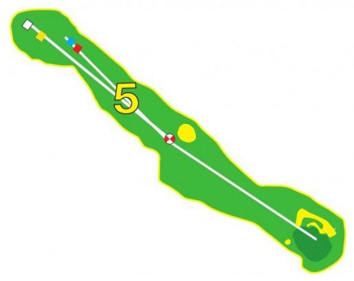 Sarcelles - Trou 5 - Plan
